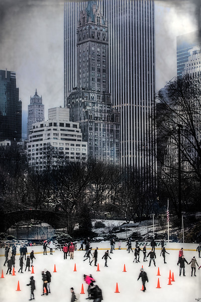 Skating In Gotham, Central Park