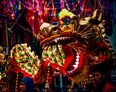 New Year Dragon