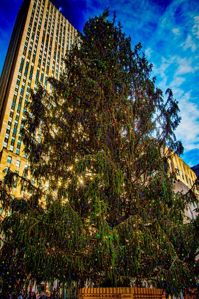 Xmas Tree At Rockefeller Center, New York City