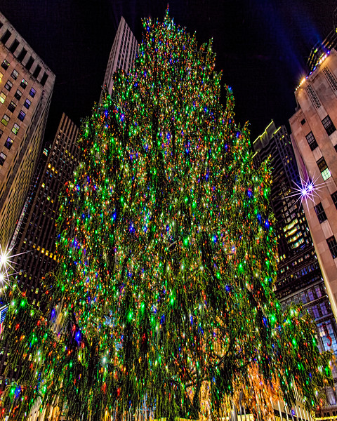 The World's Largest Christmas Tree at Rockefeller Center