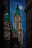 Woolworth Building In Moonlight