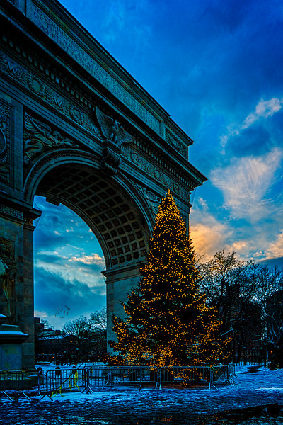 Washington Square Christmas Tree