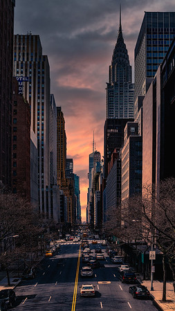 "Forty Second Street ""Vertirama"""