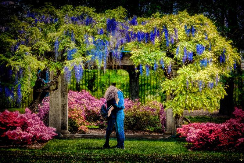 Lovers In SpringTime, Brooklyn Botanical Garden