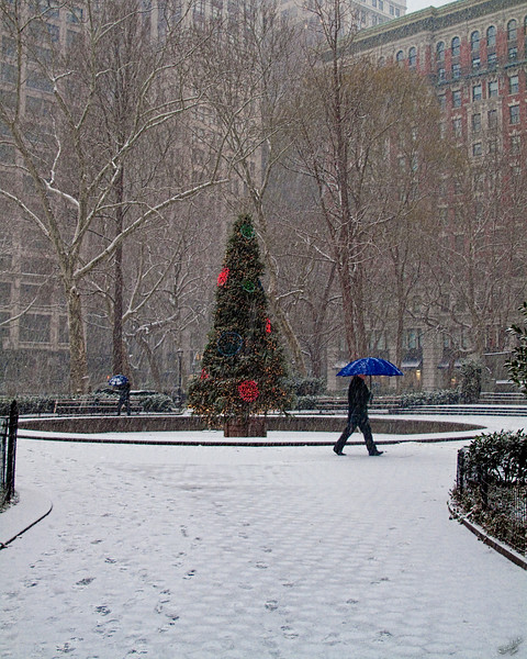Madison Square Park In The Snow at Christmas, New York City