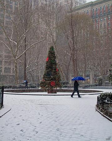 Madison Square Holiday Tree