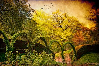 Brooklyn Botanical Garden Landscape in Spring
