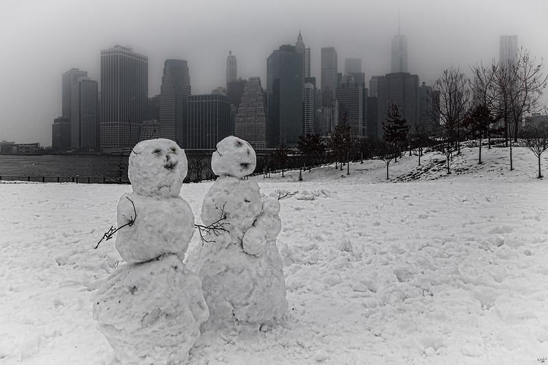The Visitors, Brooklyn Bridge Park
