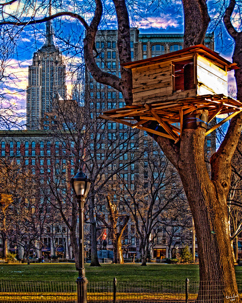 "Treehouse ""Art"" In Madison Square Park"