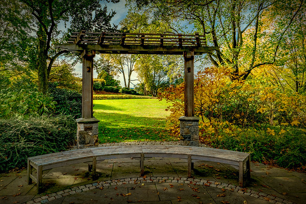 The Garden Bench