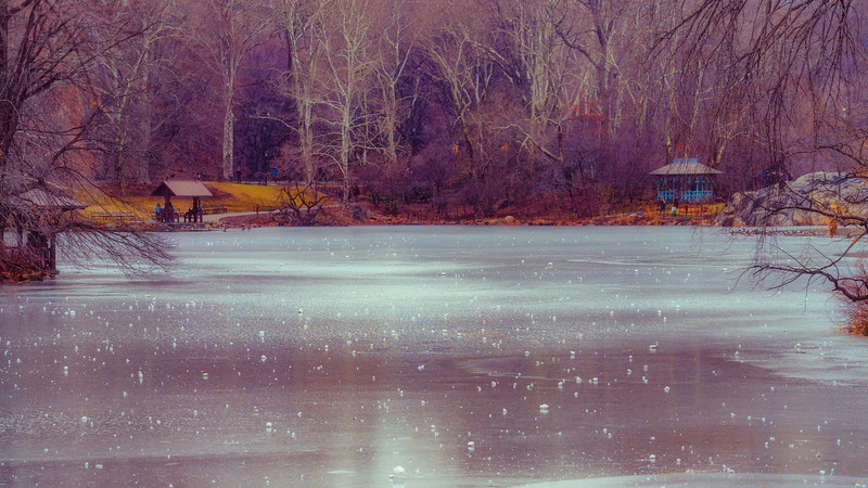 The Frozen Boating Lake In Winter