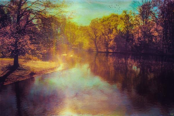 Sunflare Paintography, Prospect Park