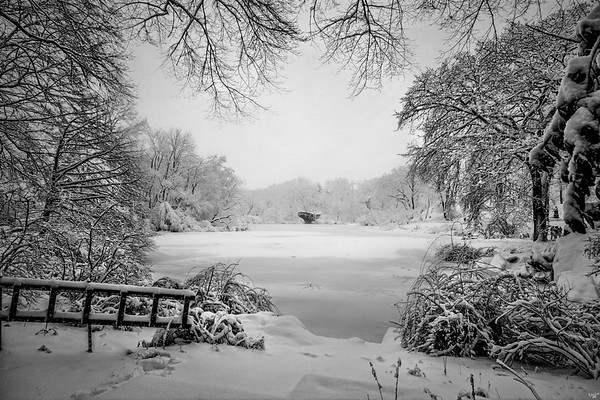 Winter Wonderland, Central Park in Snow