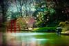Spring In The Japanese Garden