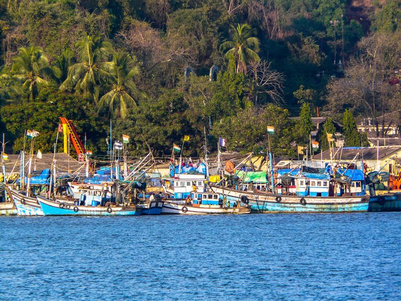 Boats on the Mandovi River, Goa