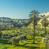 Morning on the Kidron Valley, Jerusalem