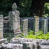 In the Jewish Graveyard, Kraków, Poland