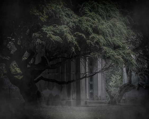 A Tomb In The Trees