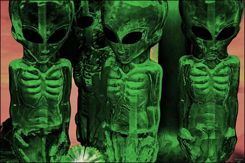 """""""Aliens"""" Seen On Ninth Avenue"""