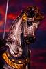 Sir Carousel Horse