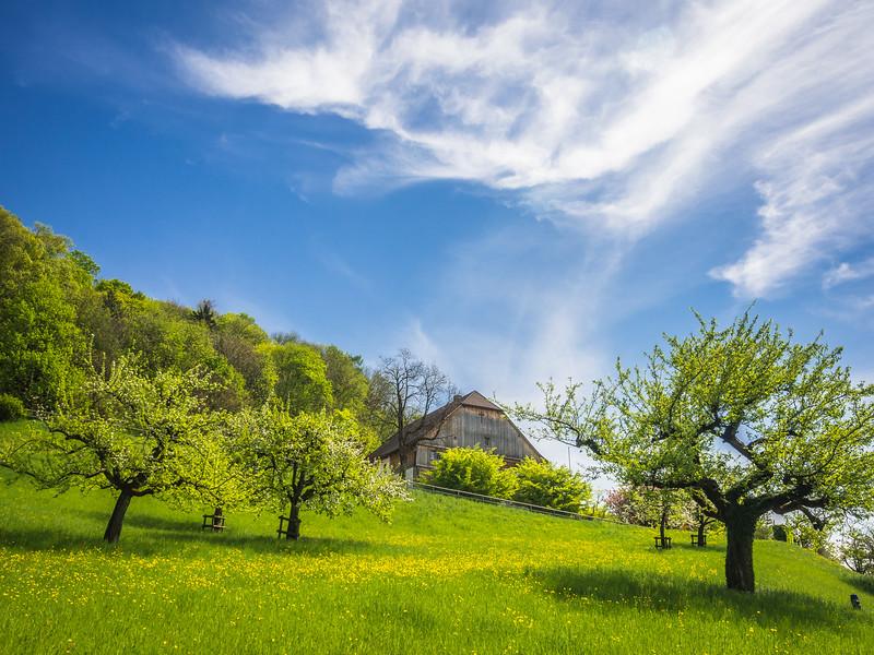 Greener Pastures, Vaduz, Liechtenstein