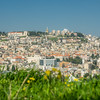 Nazareth from the Grass, Israel