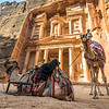 Camels and the Treasury, Petra