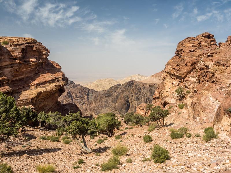 Layers of Desert, Petra