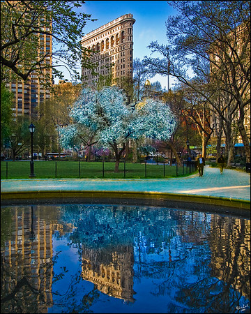 Spring In Madison Square Park and the Flatiron Building