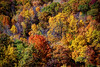 Bird's Eye View of Autumn, Poughkeepsie, New York State,