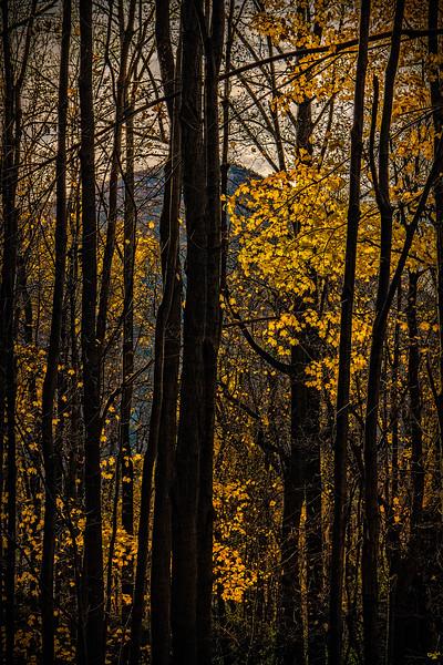 Hudson Highlands Light, Cold Spring, New York