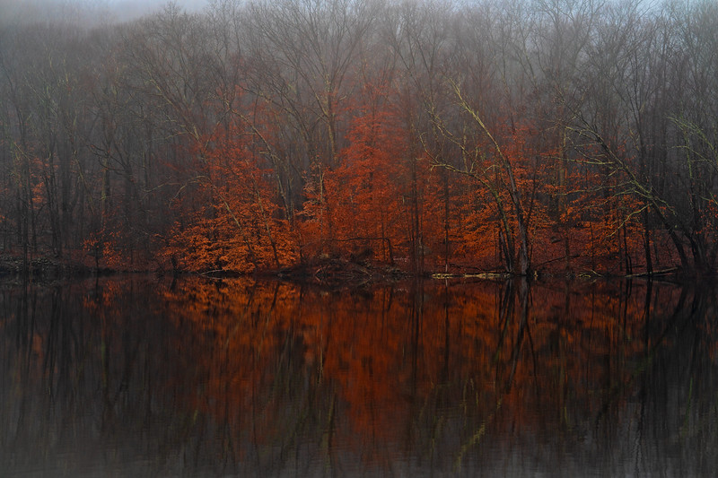 Red Mist Reflections