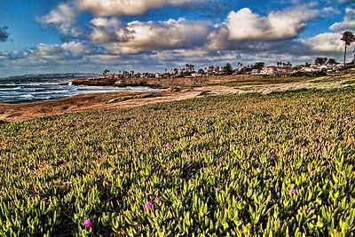 A View of the California Coastline Near San Diego