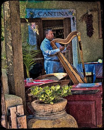 Cantina Harp Player