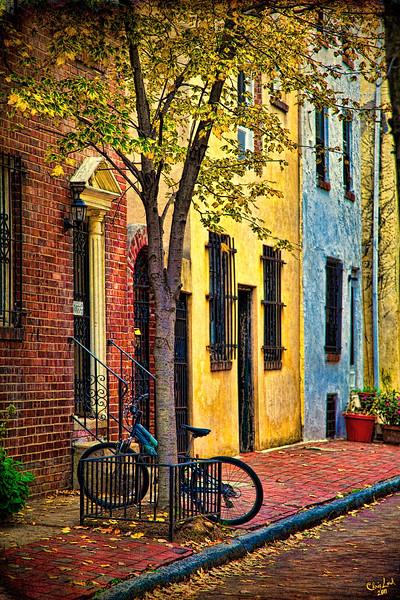 An Autumn Street