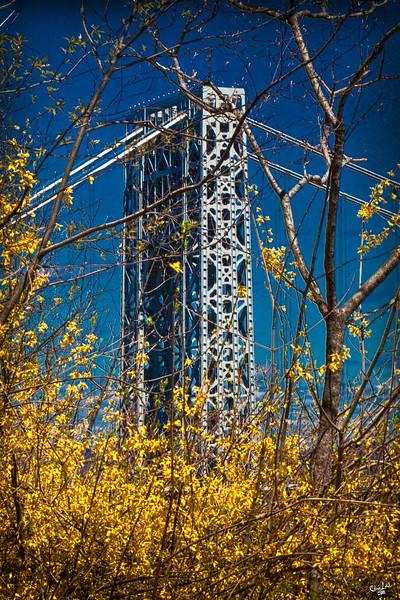 George Washington Bridge in Spring