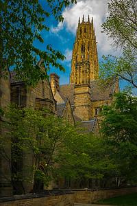 Tudor Gothic