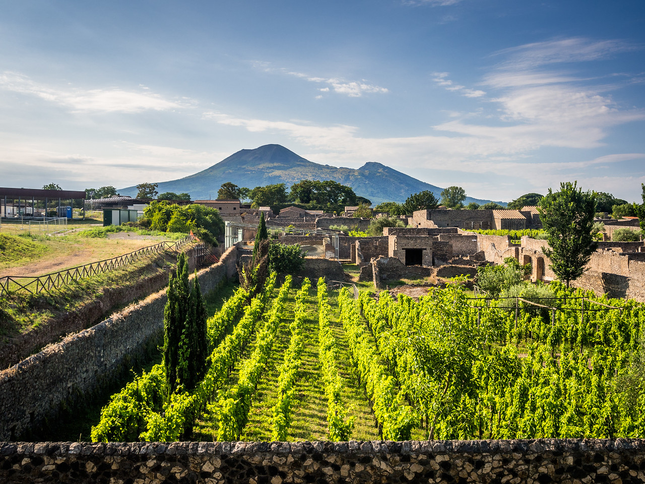 Vesuvius and the Vineyards, Pompeii, Italy