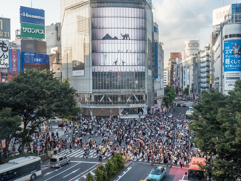 Afternoon on the Shibuya Crossing, Tokyo, Japan