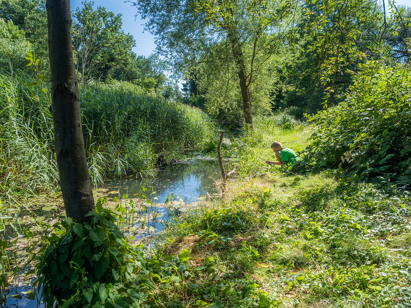 Young Boy Fishing in the Müllbach, Mecklenburg, Germany