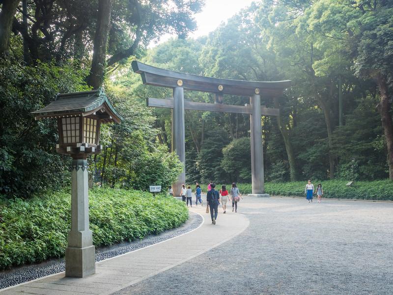 Torii in the Park, Tokyo, Japan