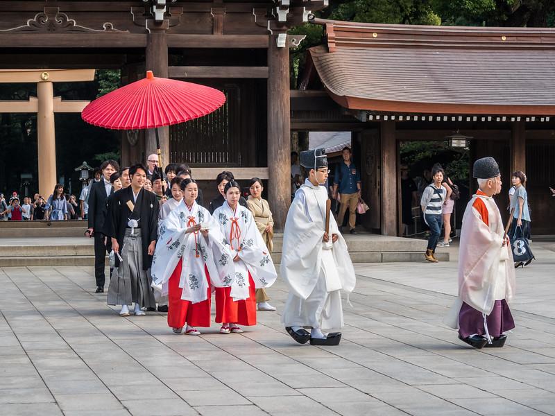 Wedding Procession at Meiji Jingu, Tokyo, Japan