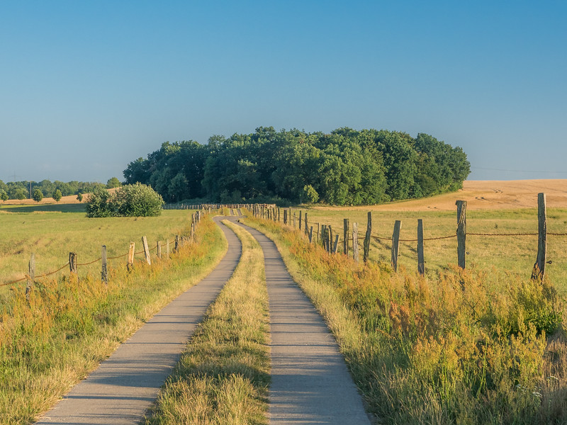 Country Road, Mecklenburg, Germany