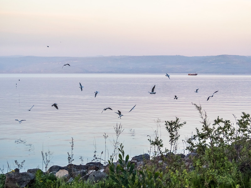 Evening Shores of Galilee, Israel
