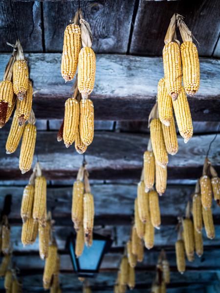 Pérouges Corn