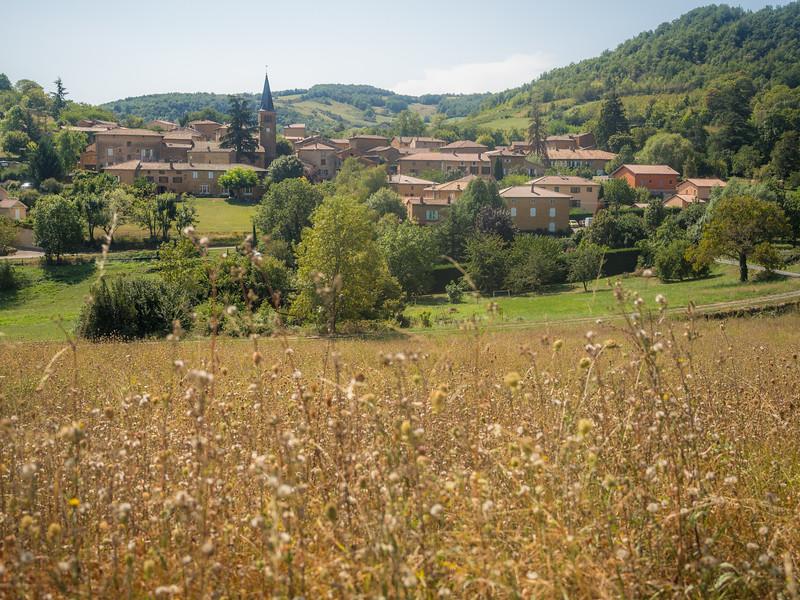 August Fields outside Ville-sur-Jarnioux, France
