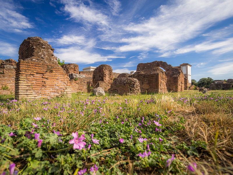 Flowers and Ruins atop Palatine Hill, Rome