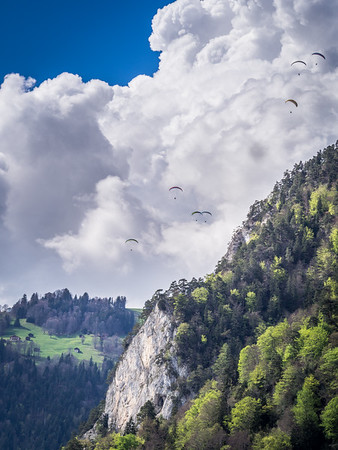 Paragliders near Interlaken