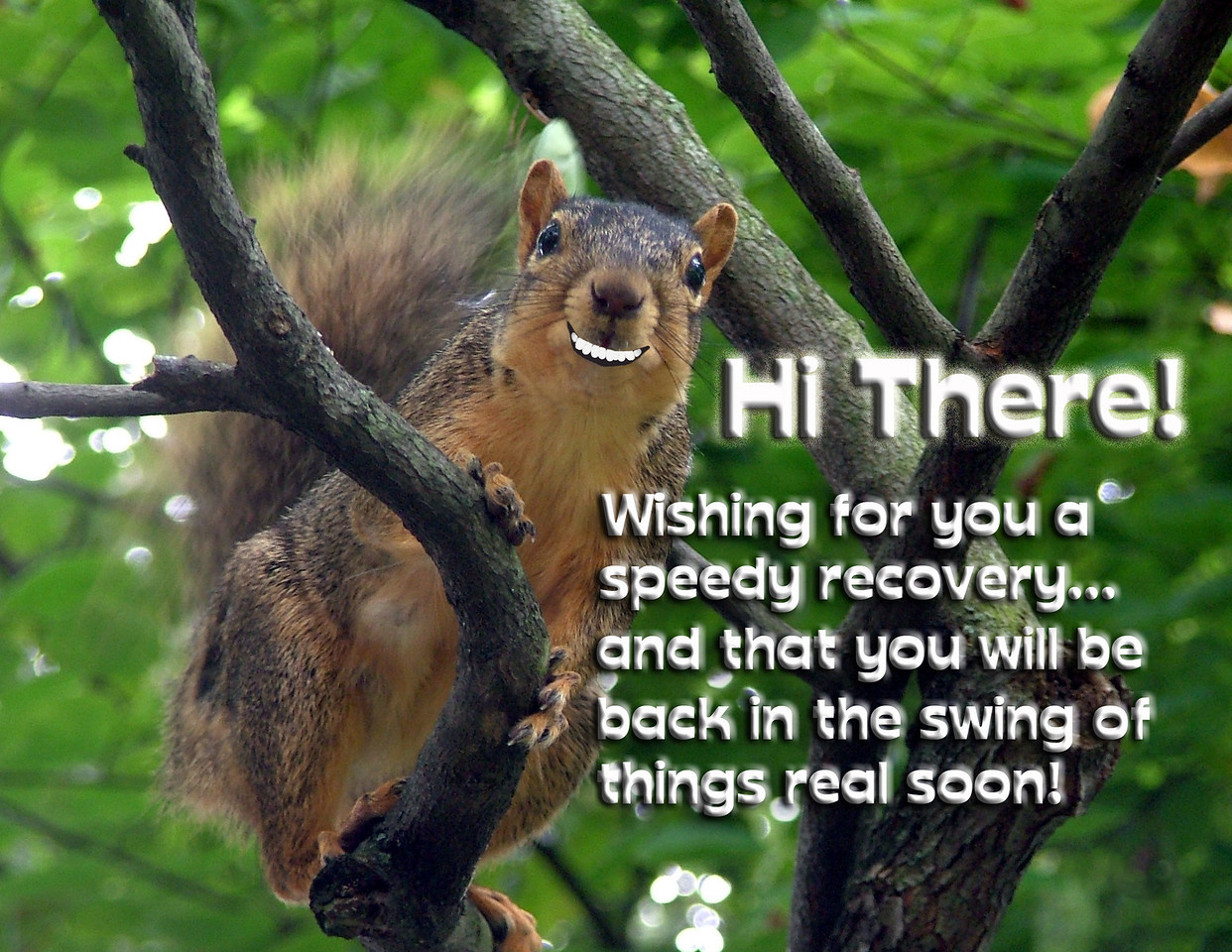Get Well card (Blank inside). May also be created as a postcard