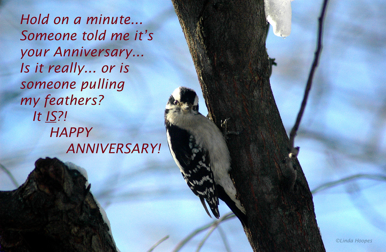 Motivational poster with anniversary theme. This was originally designed and used as a birthday theme postcard. It can be designed for the cover of a notecard. Special orders are accepted for any notecard orders. Send an e-mail for further information.